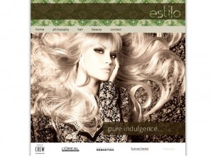 Hair & Beauty Salon website design