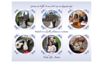 Wedding thank you card in Dutch Delfts style